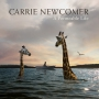 Newcomer, Carrie - A Permeable Life